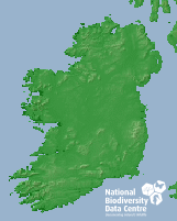 Small Map Of Ireland.Small Copper Lycaena Phlaeas Detail Biodiversity Maps